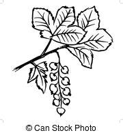 Currants Vector Clipart EPS Images. 1,693 Currants clip art vector.