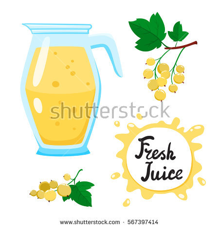 White Currant Stock Photos, Royalty.