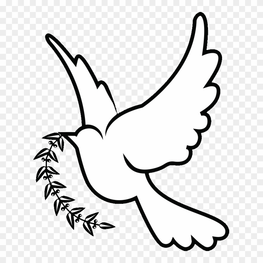 Doves Drawing Png.
