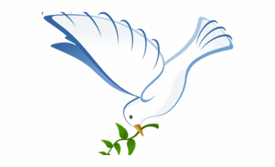 White Dove Clipart Vector.