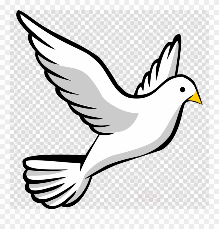 Dove Clipart Png & Free Dove Clipart.png Transparent Images.