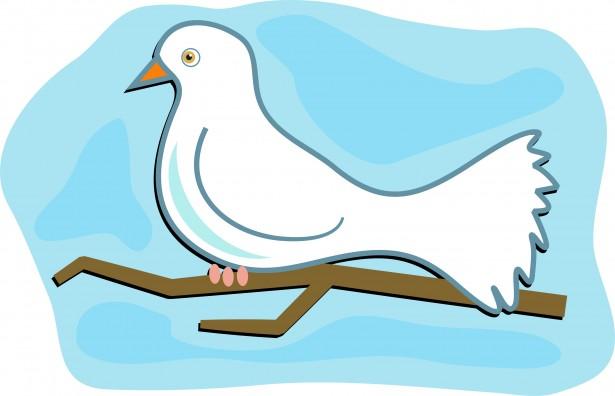 White Dove Clip Art Free Stock Photo.