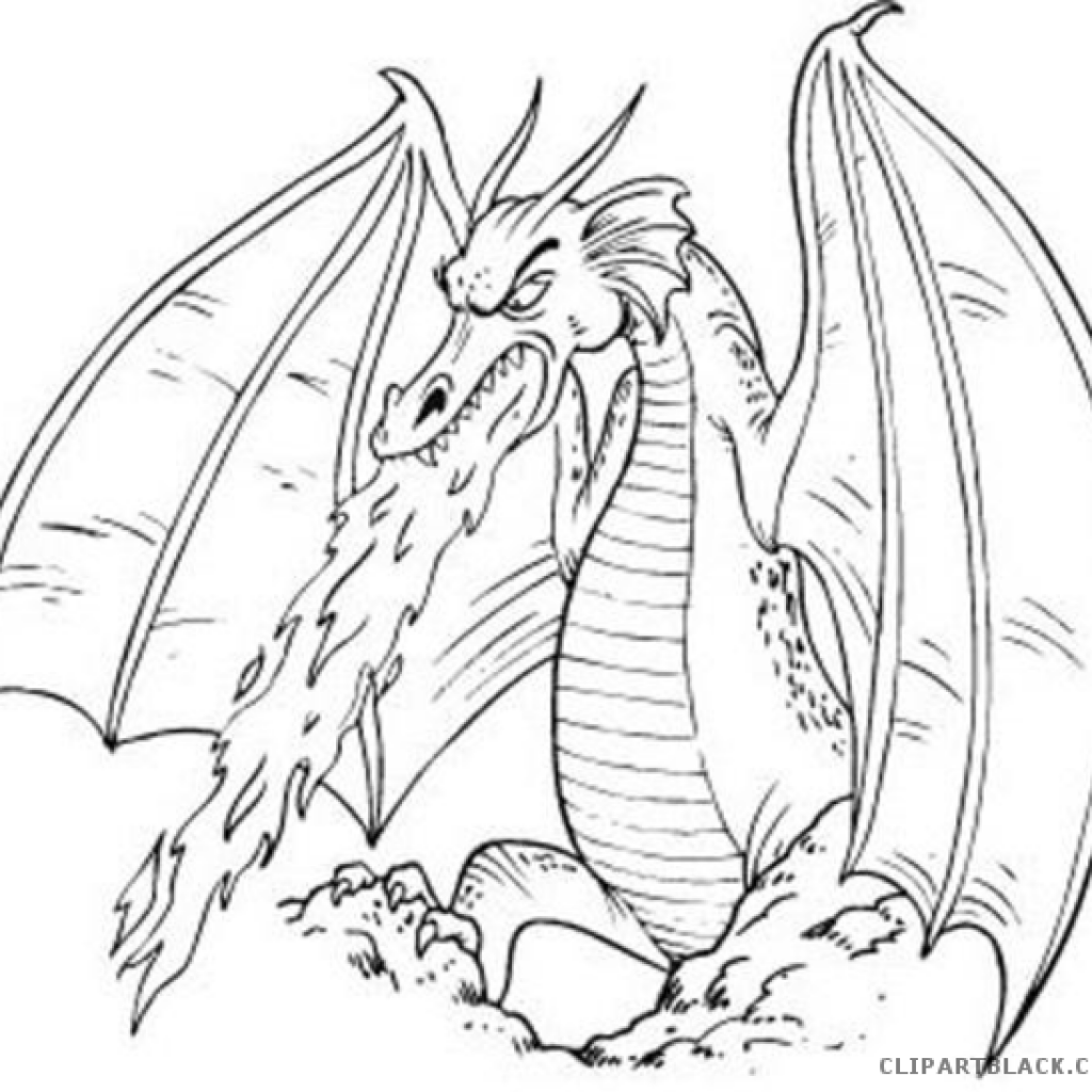 Black And White Dragon Drawings at PaintingValley.com.