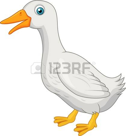 7,833 White Duck Stock Vector Illustration And Royalty Free White.