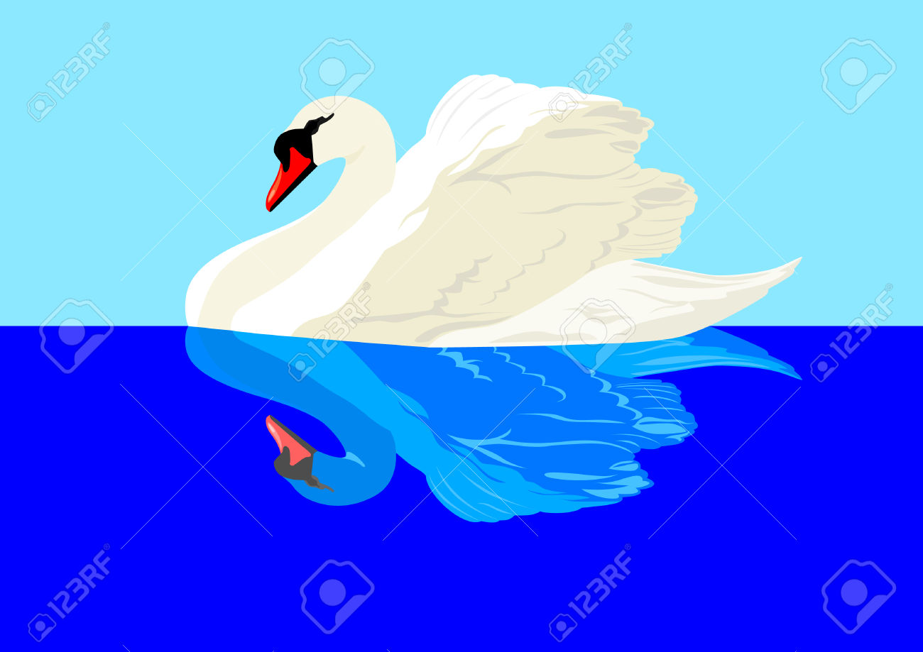 White Swan And Its Reflection On The Water Surface Royalty Free.