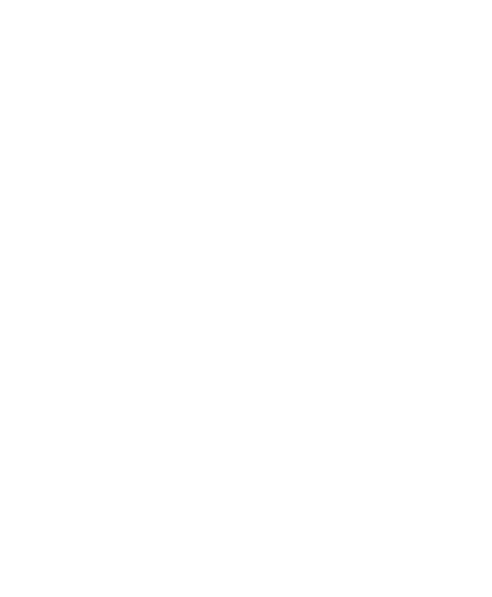 White Eagle Logo.