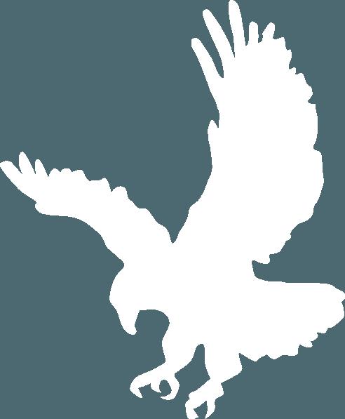 White Eagle Logo.