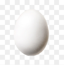 White Egg Png, Vector, PSD, and Clipart With Transparent Background.