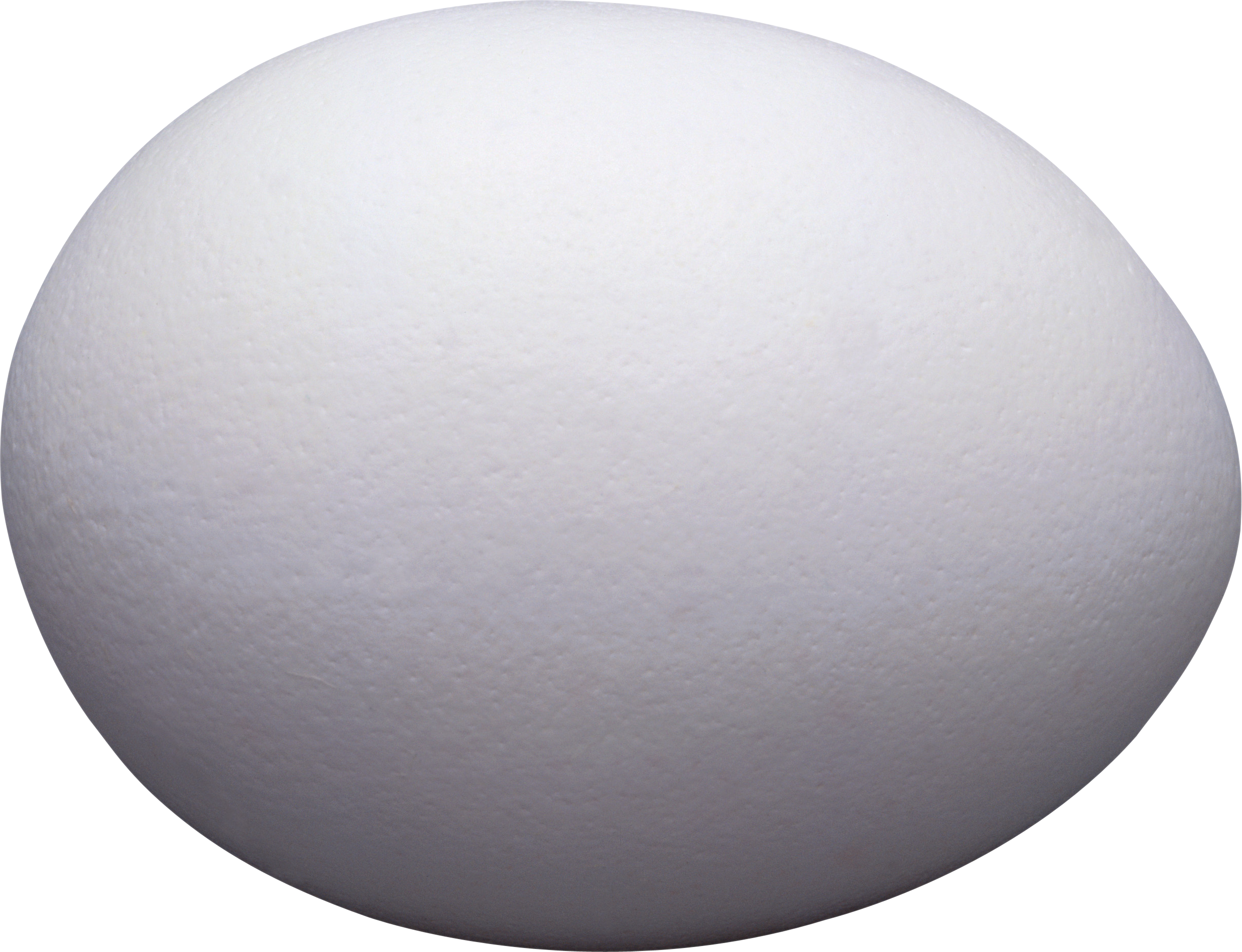 One White Egg PNG Image.