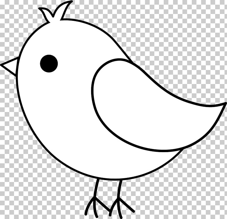 Bird Owl European robin Cockatiel , Bird Art PNG clipart.