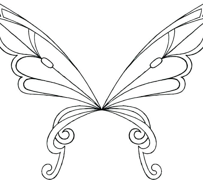 Fairy Wings Drawing.
