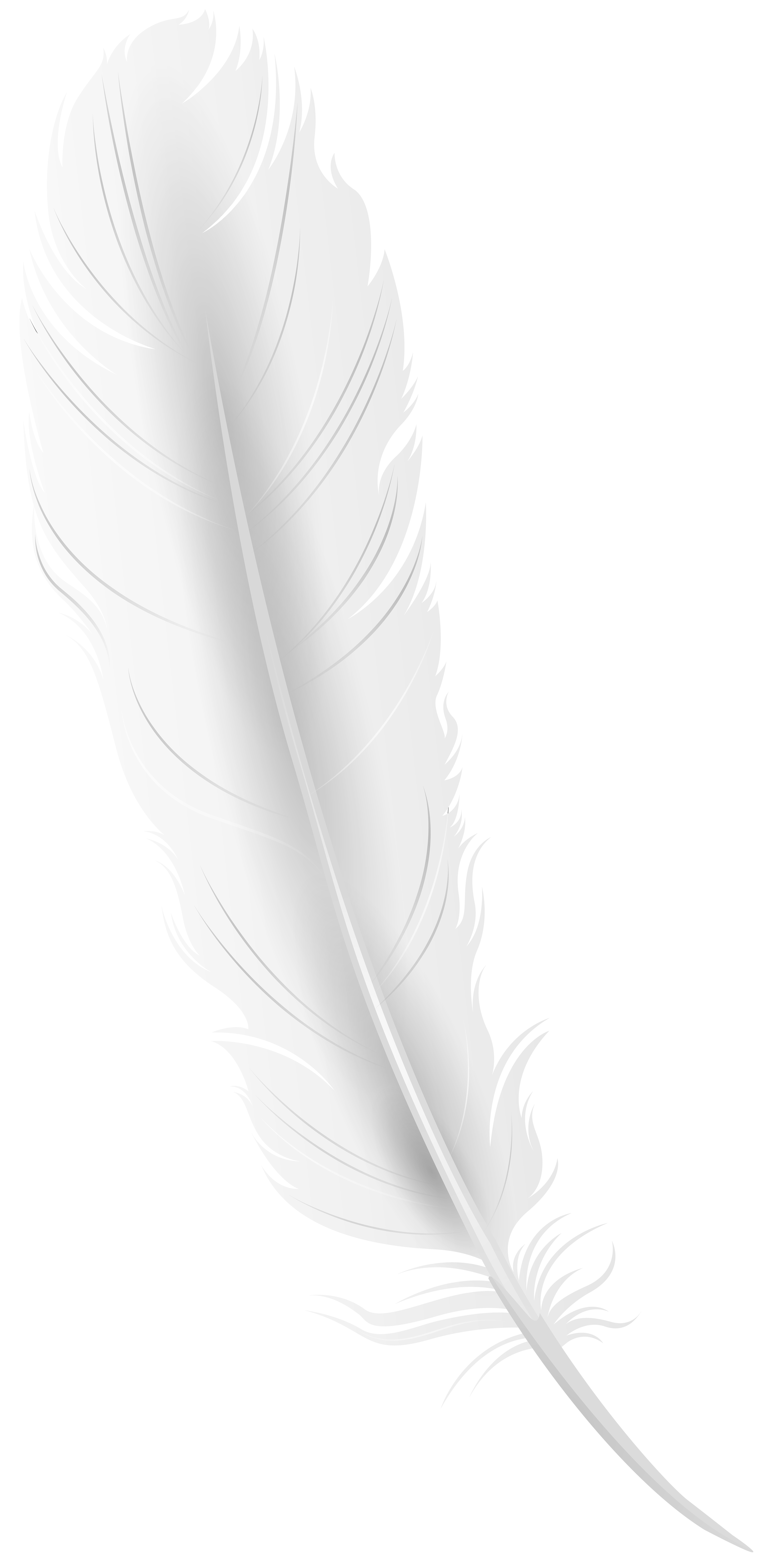 White Feather PNG Clip Art Image.