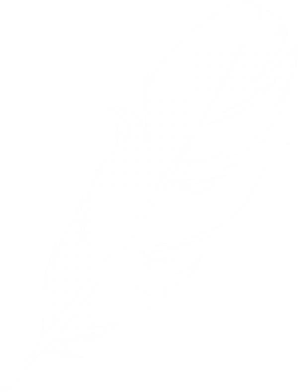 Feather Clipart Logo Image Download.