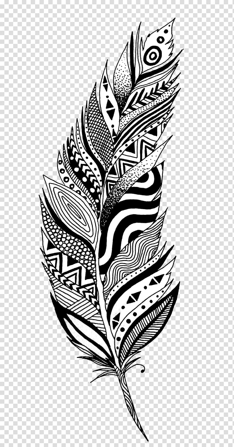 White feather Drawing , black and white transparent.