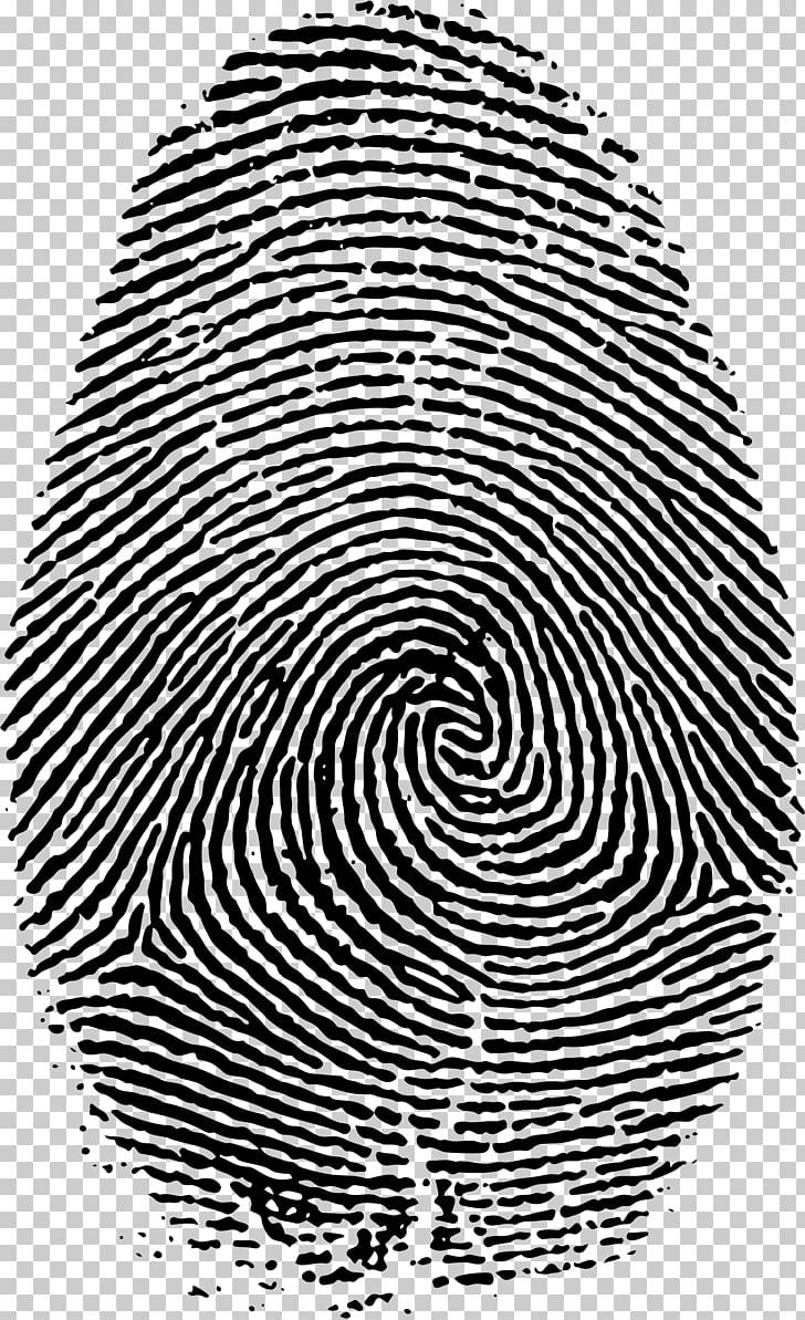 Fingerprint Live scan, big PNG clipart.