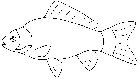 Clipart of fish black and white.
