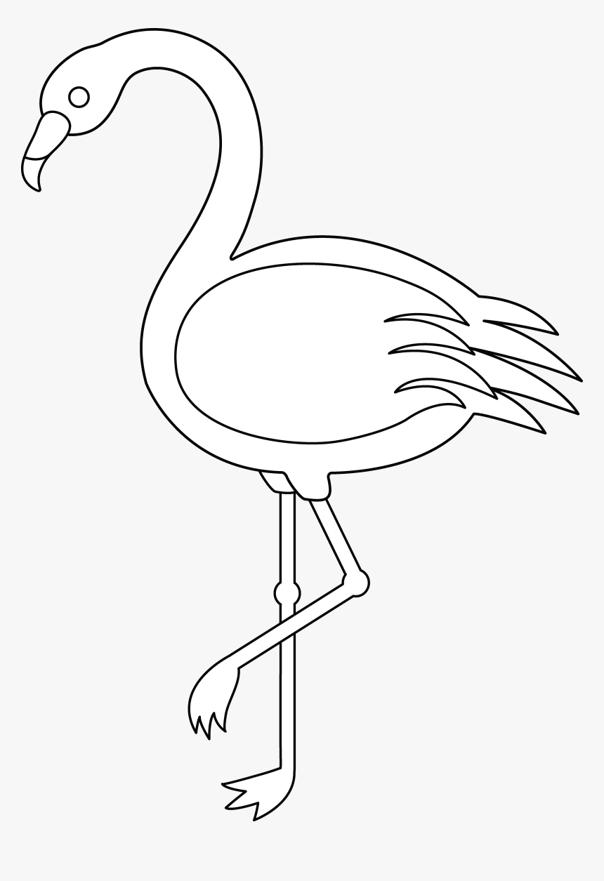 Outline Images Of Flamingo, HD Png Download.