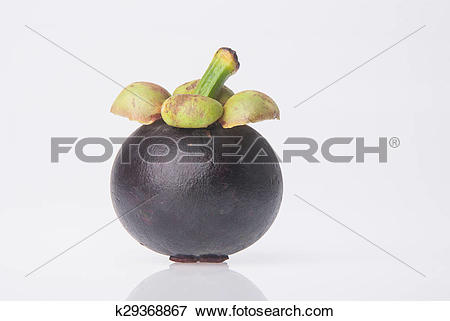 Picture of Mangosteen fruit and cross section showing the thick.
