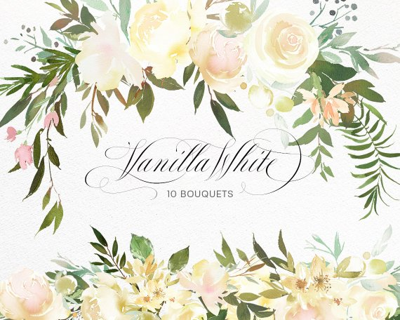 Vanilla White Watercolor Flowers Green Leaves Clipart Peony.