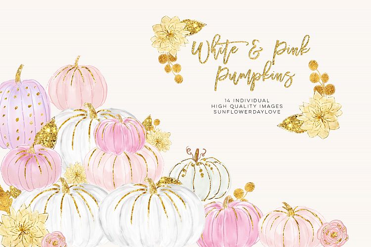 White and Pink Pumpkins, Watercolor Pastel Pumpkins.