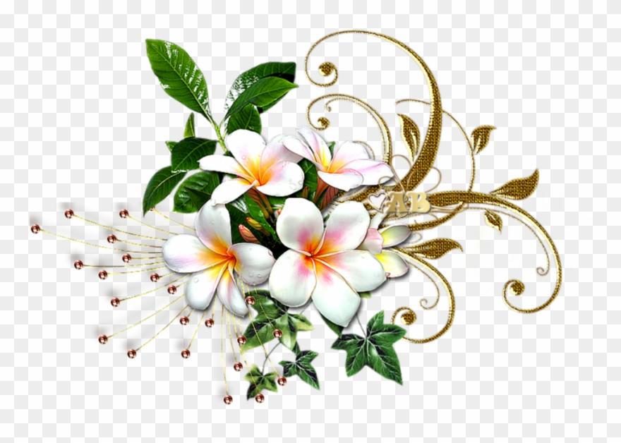 mq #white #gold #flowers #flower #garden.
