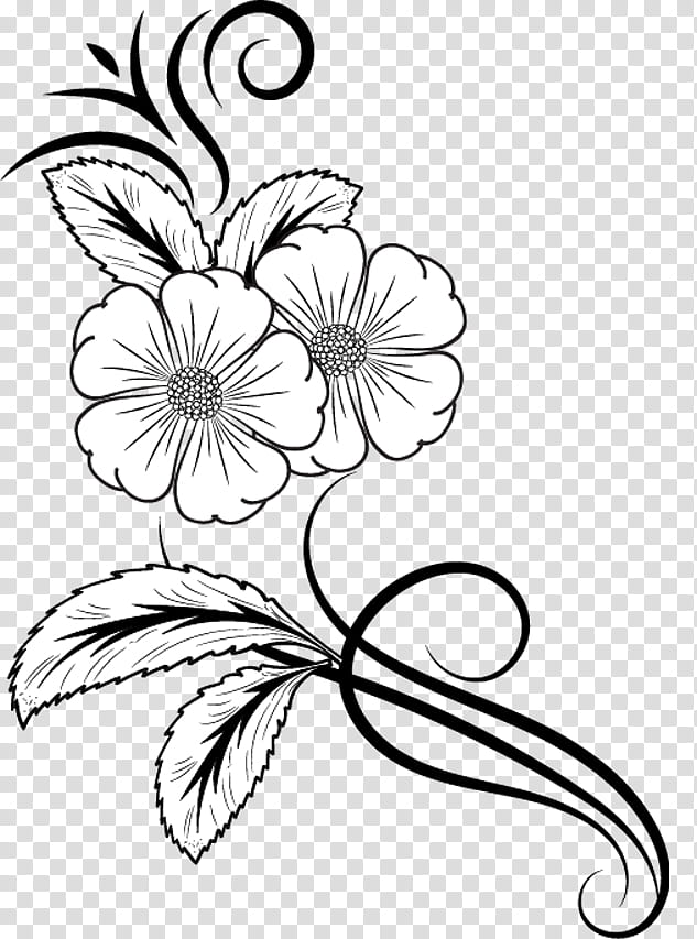 Flowers Brushes, white flower art transparent background PNG.