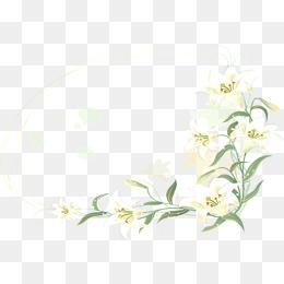 White Flower Border Clipart Png.