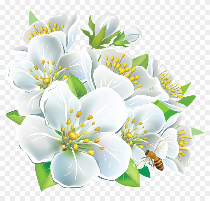 Free Png Download Large White Flowers Clipart Png Photo.