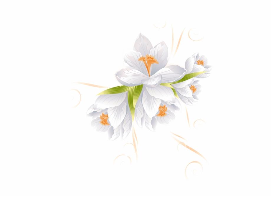 White Flowers, Beautiful Flowers, Flower Decorations,.