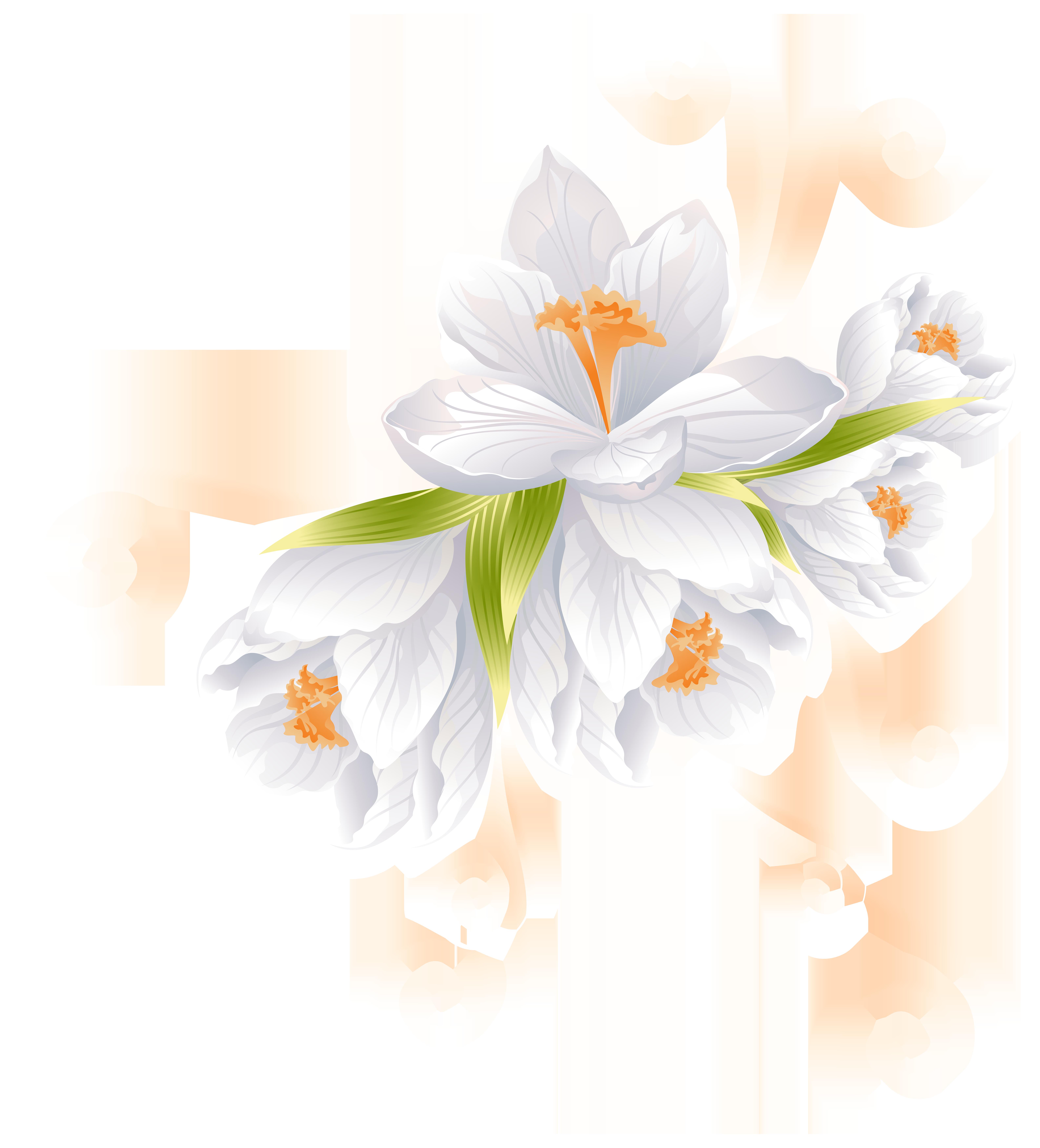White Flower Decor Transparent PNG Clip Art Image.