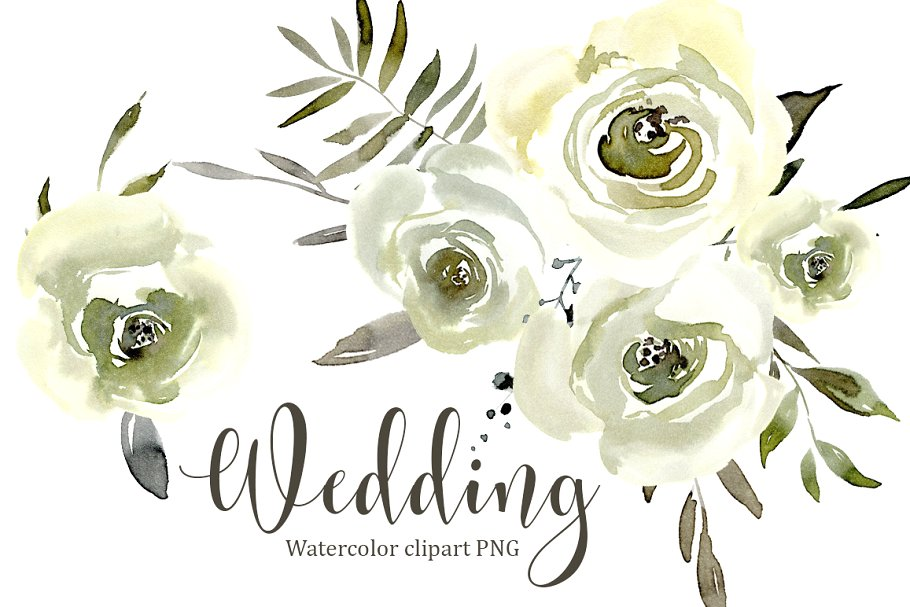 Watercolor White Roses Flowers PNG.
