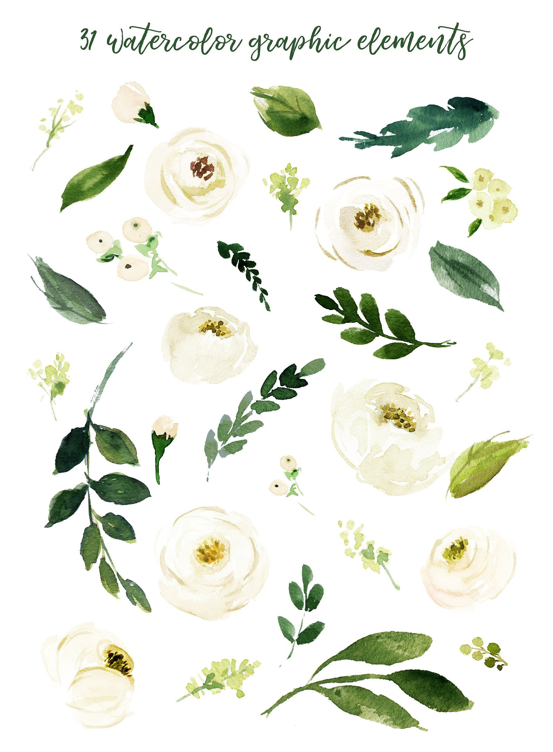Watercolor White Flower Clip Art by Graphic Box on.