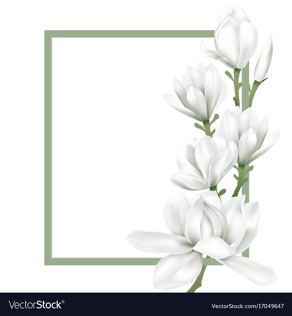 Frame with white flower.