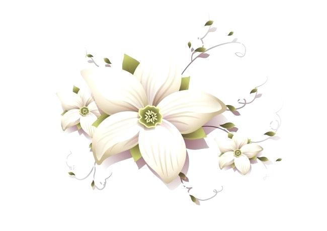vector images of flowers png.