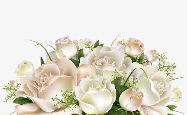 A Bunch Of White Flowers PNG, Clipart, Bunch Clipart.