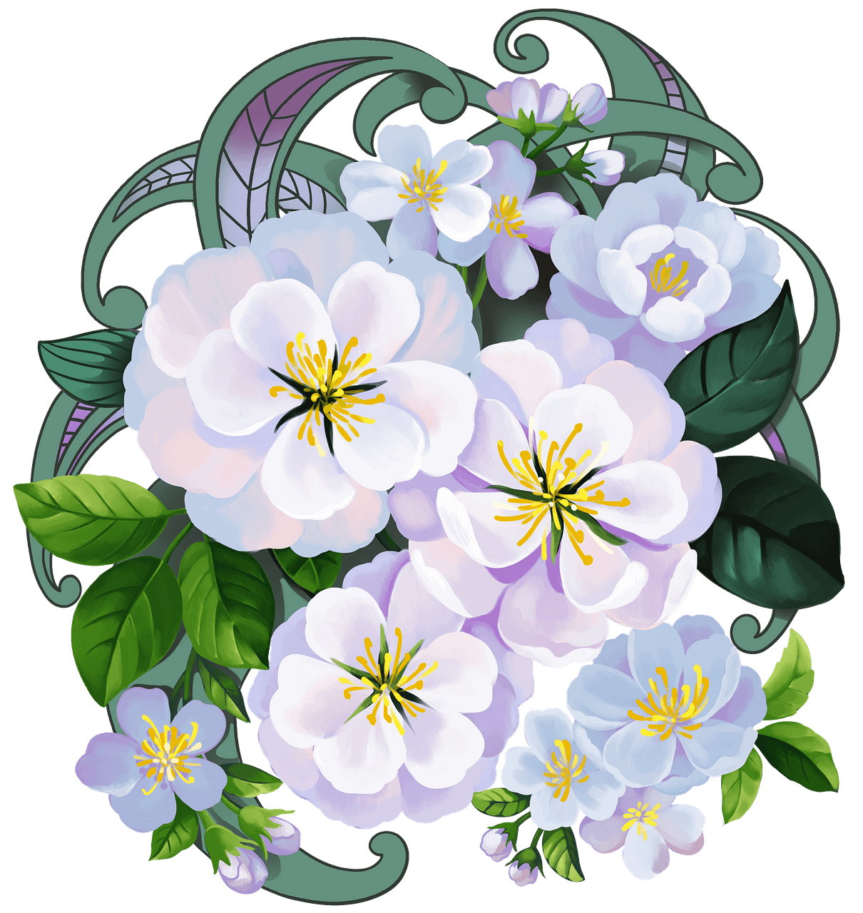 White flowers clipart. Free download..