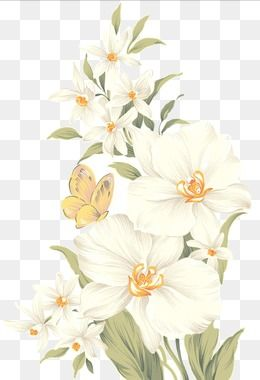 Hand Painted Flowers, Hand Painted, White, Flowers PNG.