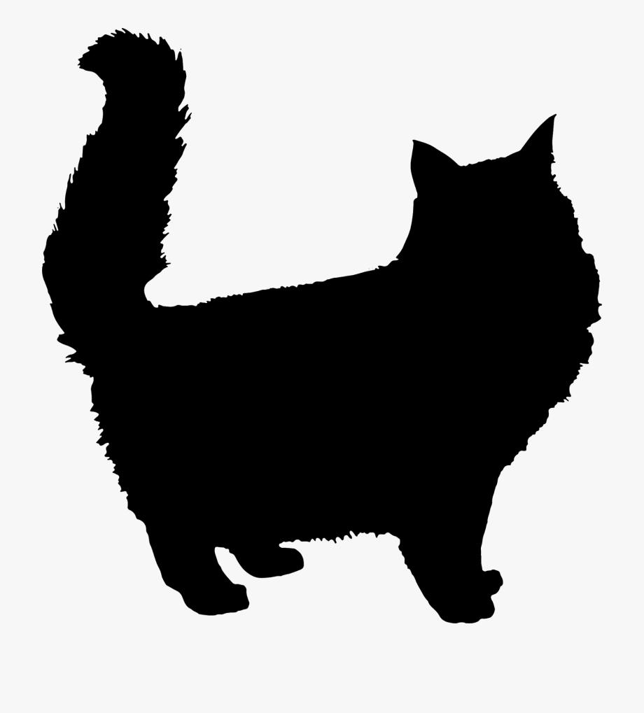 Fluffy Cat Clipart.
