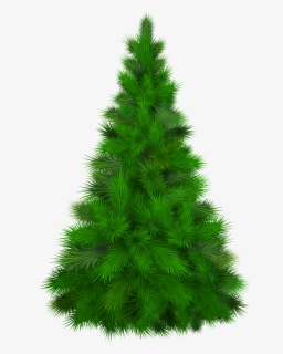 Free Pine Tree Clip Art with No Background.