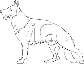 1316 German Shepherd free clipart.