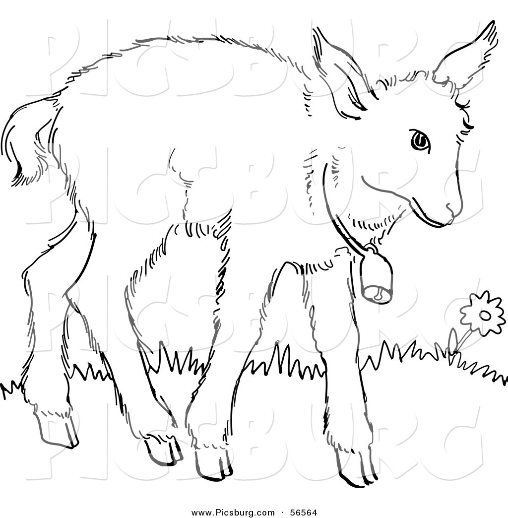 Baby goat clipart black and white.
