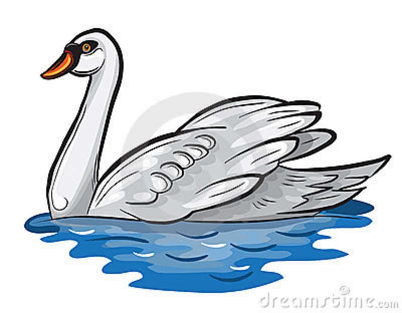 Duck Swimming Clipart.