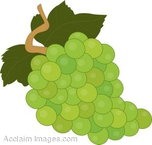 Royalty Free Clipart Illustration of a Bunch of White Grapes.