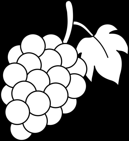 Grapes outline clipart black and white.