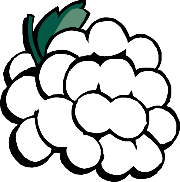 Grapes Clipart Black And White.
