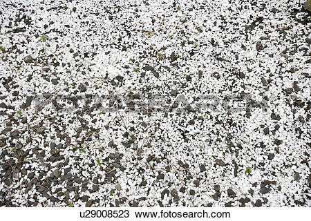 Stock Photo of White and black gravel u29008523.