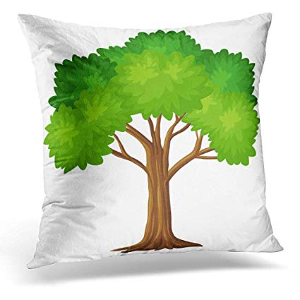 Amazon.com: Throw Pillow Cover Clipart Green Tree on White.