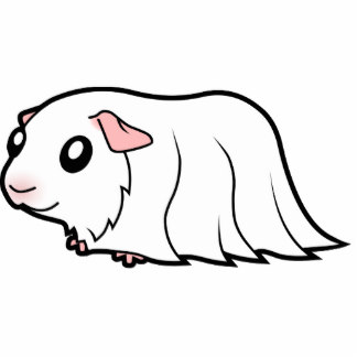 Free Pictures Of Black And White Guinea Pigs, Download Free.