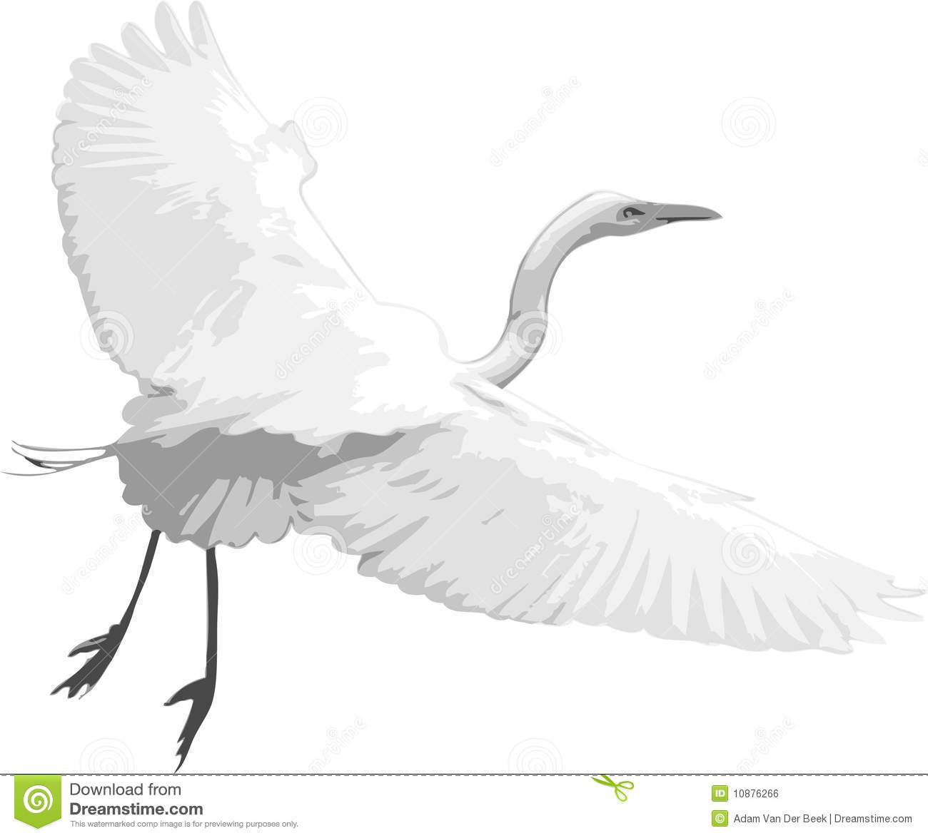 White Heron Stock Illustrations.