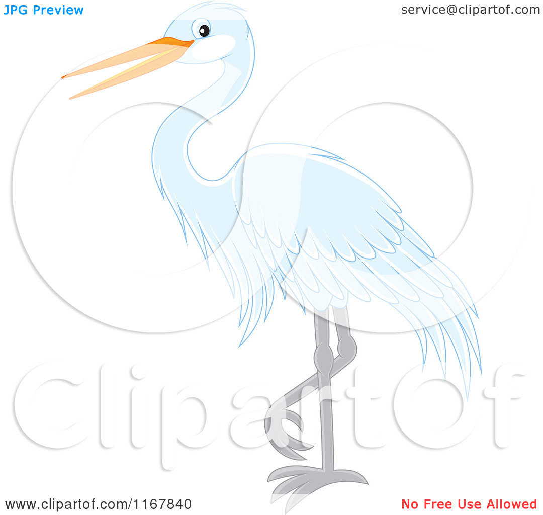 Cartoon of a Standing White Heron or Egret.